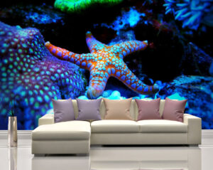 Bright Fromm Starfish Wall Mural