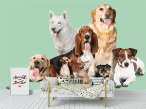 Sweet Group of Dogs Wall Mural