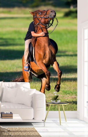 Horse Riding Lawn Adventure Wall Mural