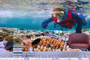Snorkeling Dive in Great BarrierWall Mural